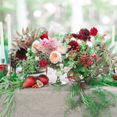 Square cassiclaire woodlands elopement 004